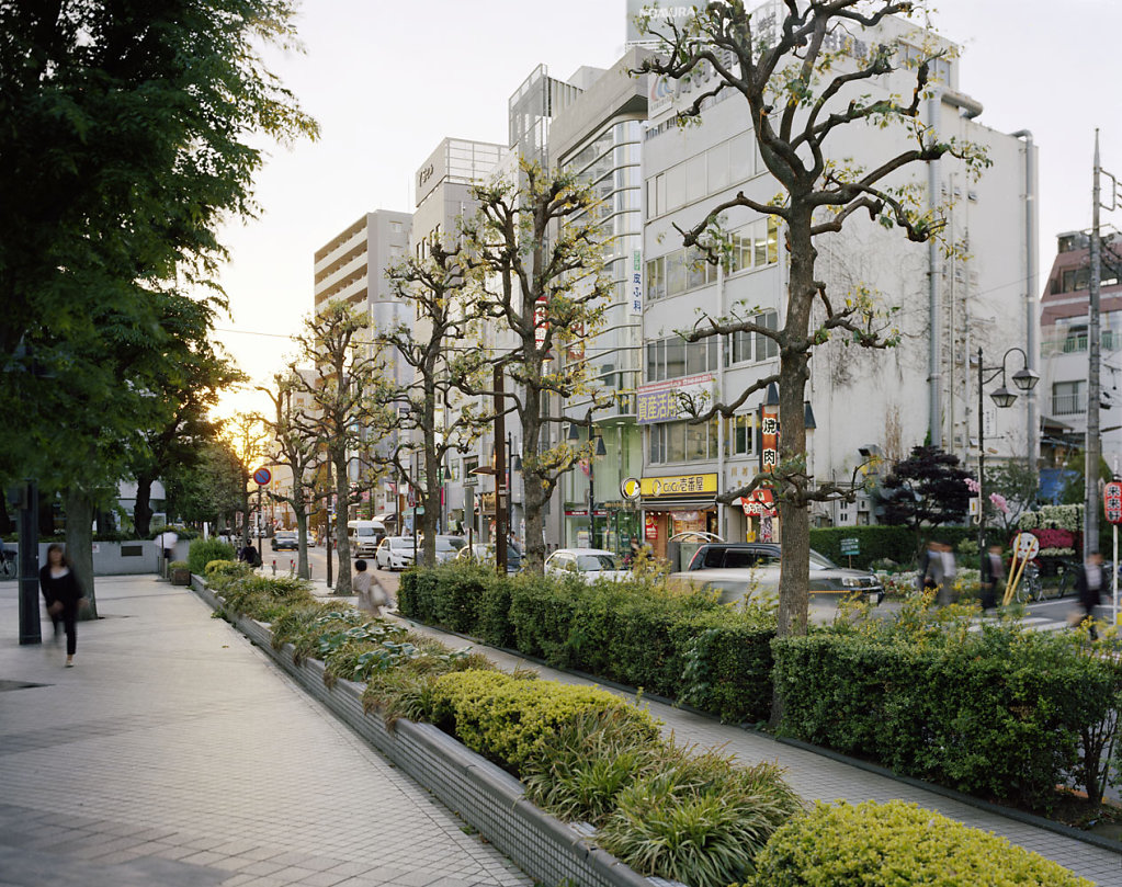 Japan-1-Omiya.jpg